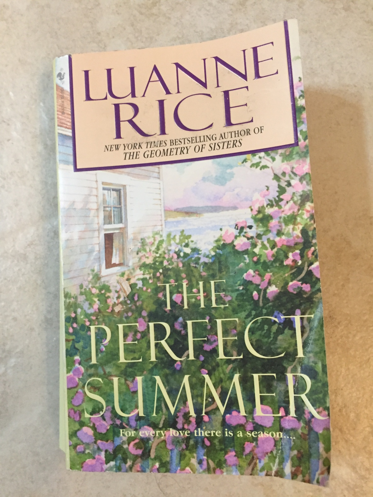 Beach House Book #2 – Perfect Summer by Luanne Rice