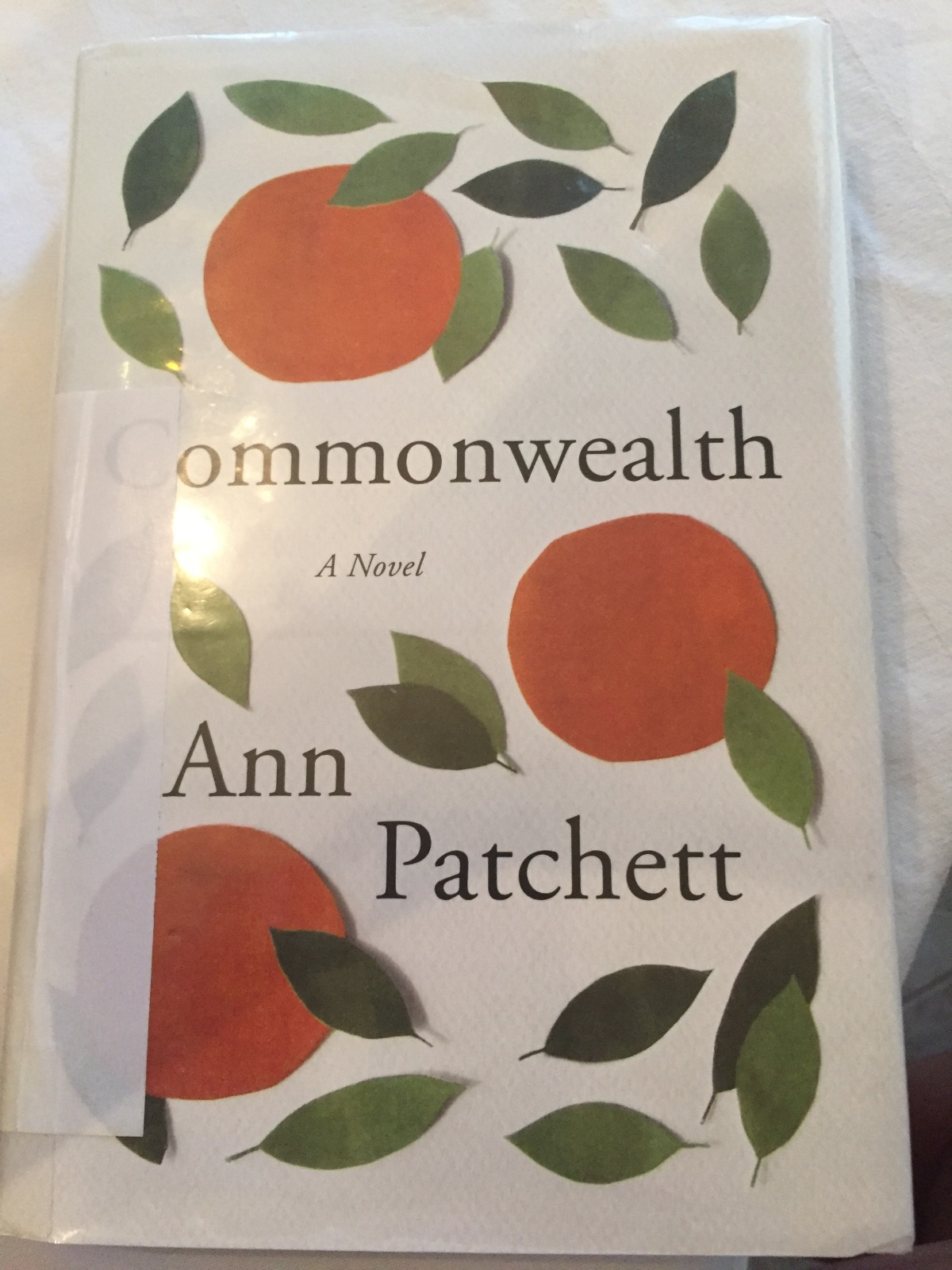 Beach House Book #7 – Commonwealth by Ann Patchett