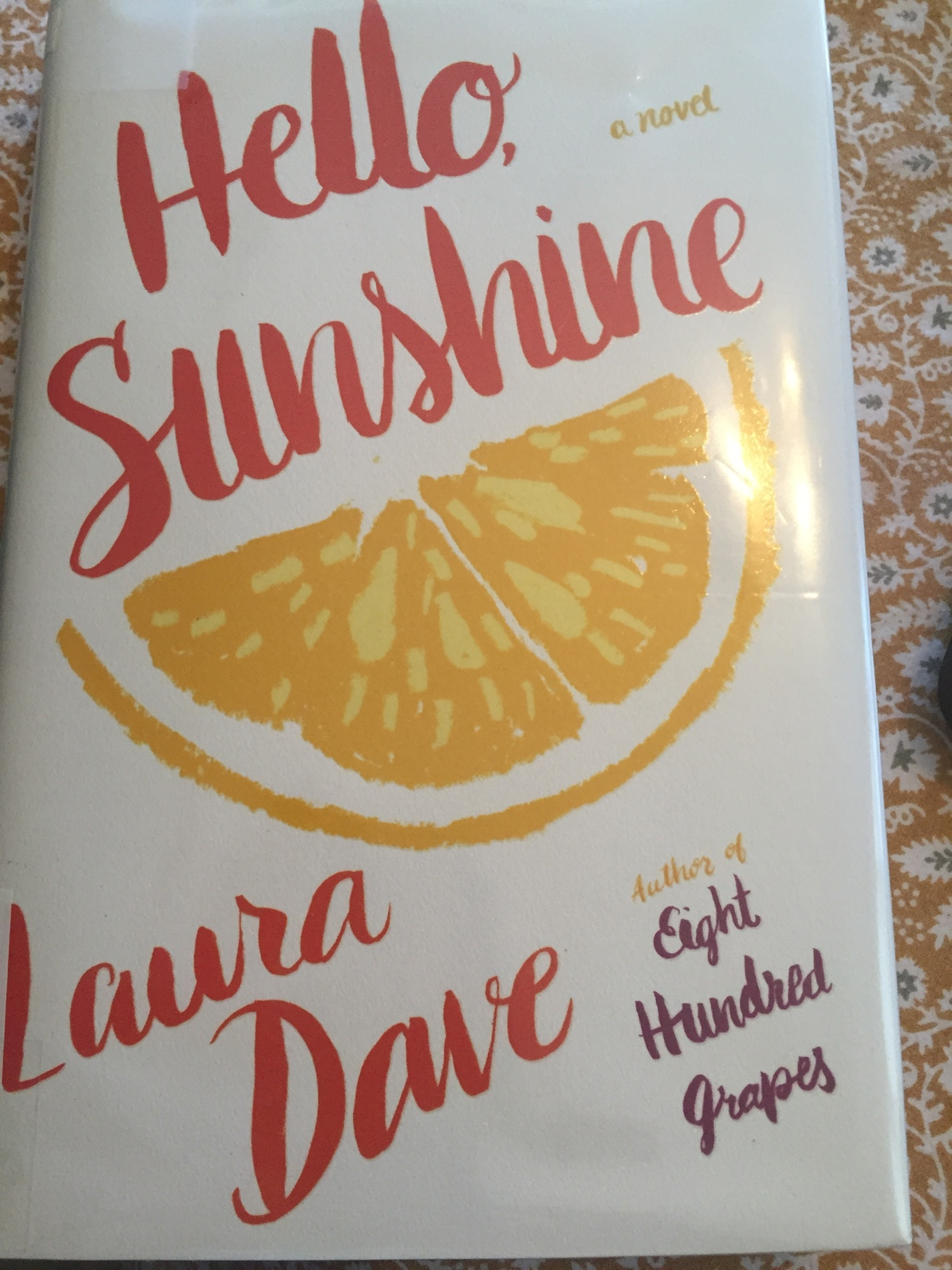 Beach House Book #9 – Hello, Sunshine by Laura Dave